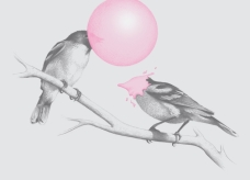 http://www.threadless.com/product/1489/The_Northern_Black_capped_Gumchewer/