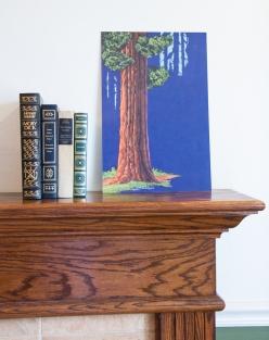 Redwood_mantle-2-9